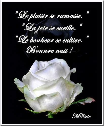 ipernity: rose blanche pour une belle nuit - by M@rie