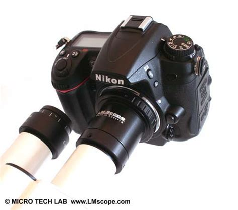 Camera test: The Nikon D5600 on the microscope – LM